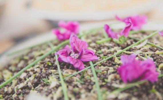 salade de lentilles courgettes fleurs de mauve